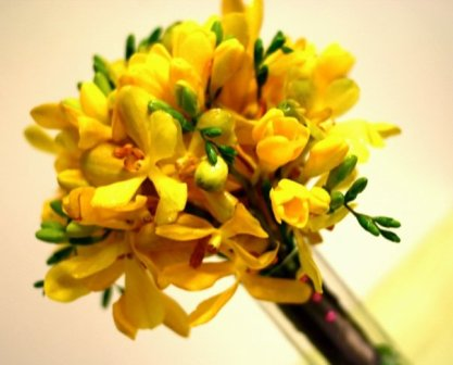 Wedding Maid of Honor Bouquet, Yellow orchids and freesia